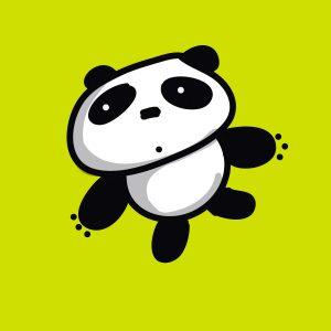 instagram-panda