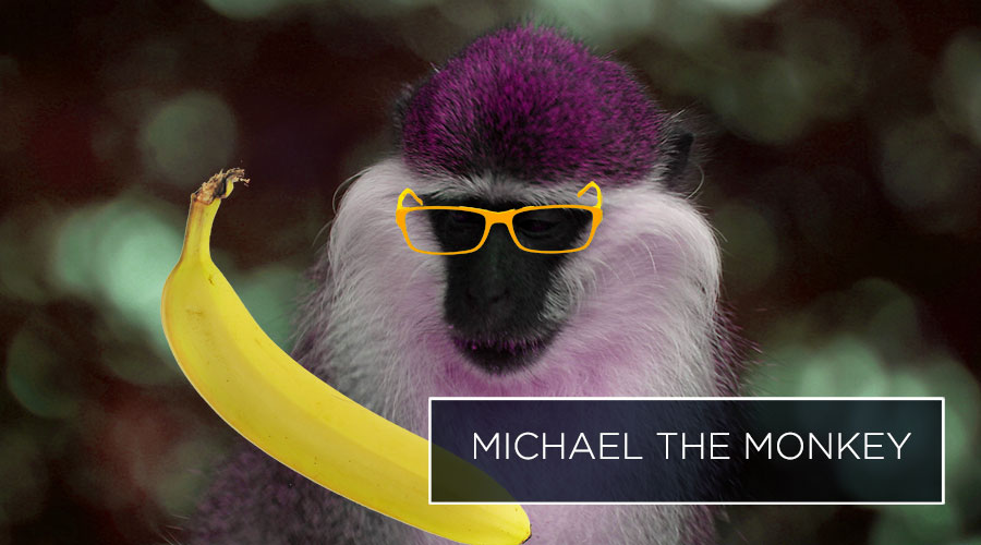 michael the monkey